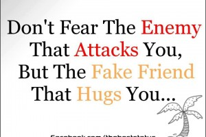 Friendship Quotes - fear the enemy that attacks you but the fake friend that hugs you