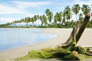 Beautiful Scene Of A Beach