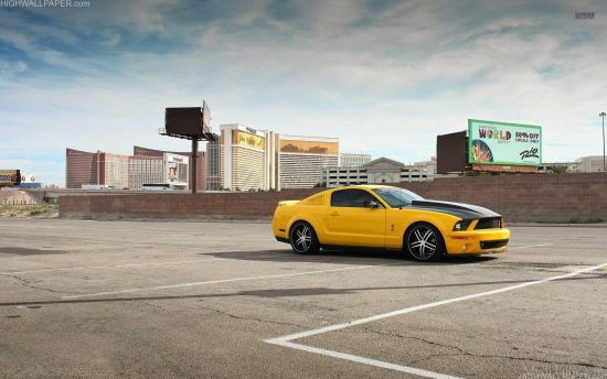 Bumble Bee Mustang Yellow