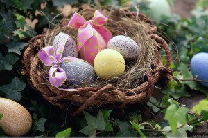 Colorful Stones Design Eggs in Basket