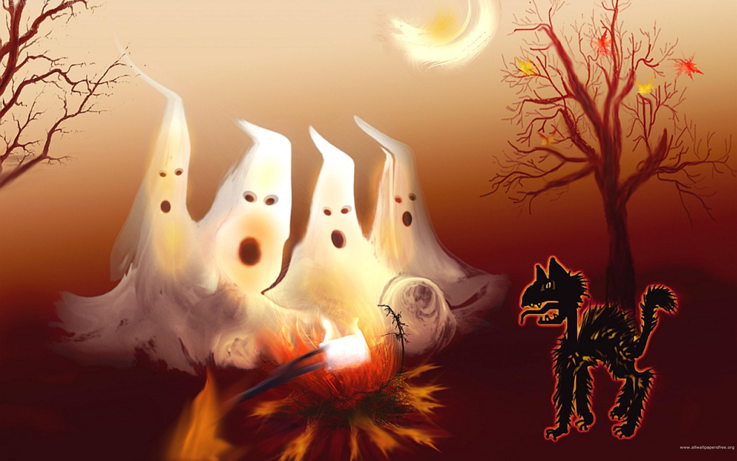 helloween white ghost cat hd wallpaper