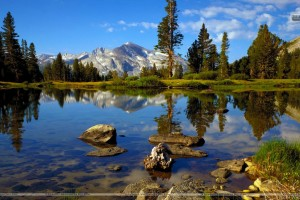 High Country Near Tioga Pass Yosemite National Park California
