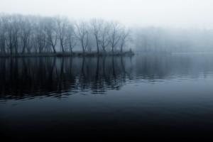 Lake Trees and Fog
