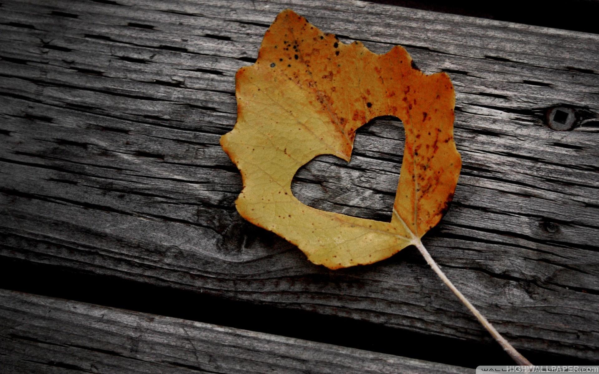 Leaf Heart Shape