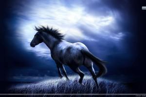 Running Dark Horse